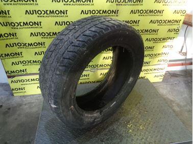 - Zimná pneumatika Dextero DWT-I 205/55 R16 91H